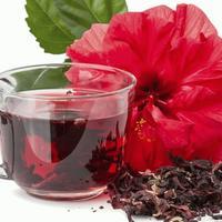 Te de flor de jamaica