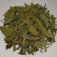 Hoja de stevia
